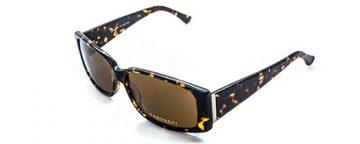 Caducci CD1003 havana ladies sunglasses